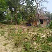 Tanah Kavling Area Industri (26028859) di Kota Yogyakarta