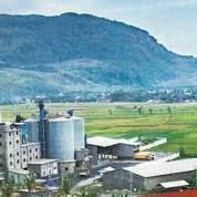 PABRIK SEMEN PT. PUGER Lokasi Jember Jawa Timur Luas 65 Ha (26037207) di Kab. Jember