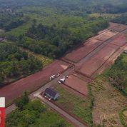 Take Over Lahan Permata Maja Residence - Cikoja - Maja - Lebak Banten (26043687) di Kab. Lebak