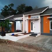 Rumah Nyaman Dan Sejuk Di Tengah Perkampungan Dekat EXIT TOL Ungaran (26047419) di Kab. Semarang