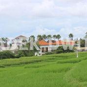 Tanah Murah Semat Berawa Canggu Lingkungan Villa View Sawah (26070151) di Kab. Badung