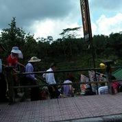 Tanah Di Tegallalang Ubud +-1Km Dari Tempat Wisata Teras Padi (26075699) di Kab. Gianyar