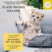 Neko Kepo - Flash Promo Malang (26077207) di Kota Malang