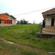 Kavling Siap Bangun PROMO CASH DIBULAN INI (26077755) di Kota Bogor