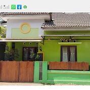 Rumah Pinggir Jalan Besar Posisi Hook Di Kancilan Utara Jalan Damai (26122523) di Kab. Sleman