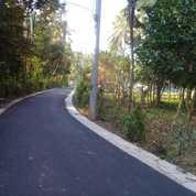 Tanah Pinggir Jalan Aspal Hotmix Di Jembrana Bali (26125667) di Kab. Jembrana
