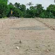Tanah Kavling Murah Di Kartasura Dekat Transmart Dan UMS Cash Back 10 Jt (26133631) di Kab. Sukoharjo
