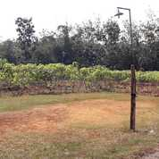 Tanah Kering Siap Bangu 6.939 M2, Polokarto, Karanganyar, Surakarta (26136455) di Kab. Sukoharjo