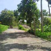 Kavling Paling Strategis Di Kulon Progo (26140559) di Kota Semarang