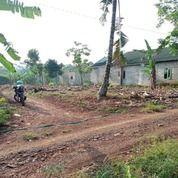 Tanah Murah Di Boja Kendal (26147215) di Kab. Kendal