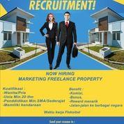 Lowongan Kerja Marketing Freelance The Consultant Property (26181943) di Kab. Tangerang