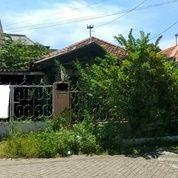 Turun Harga .. Rumah Tenggilis Utara Hitung Tanah Lokasi Strategis (26184923) di Kota Surabaya
