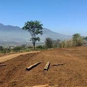 Tanah Kavling Siap Bangun Free SHM Dan Rumah Belakang BNS Kota Batu (26186715) di Kota Batu