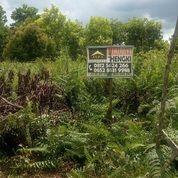 Tanah Reformasi, Sospol, Pontianak, Kalimantan Barat (26194735) di Kota Pontianak