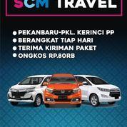 Travel Trayek Pekanbaru Tujuan Pangkalan Kerinci PP (26196787) di Kab. Pelalawan