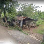 Tanah Strategis Lokasi Pinggir Jalan PWRI Tonjong Parung Bogor (26207923) di Kab. Bogor