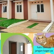 Taman Griya Asri Rumah Di Cilebut Dp0% Hanya Booking Aja (26221411) di Kota Bogor