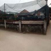 Rumah Plus Tanah Luas Plaju (26268147) di Kota Palembang