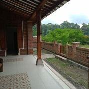 Rumah Dekat Danau Dekat Kota Yogyakarta (26275827) di Kab. Sleman