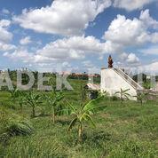 Tanah Sewa View Sawah Pura Beten Kepuh Berawa Canggu (26278415) di Kab. Badung