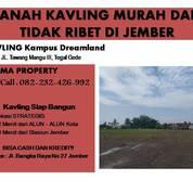 KAVLING MURAH DAN TIDAK RIBET DIJEMBER (26325515) di Kab. Jember