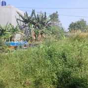 Tanah Strategis Di Kebun Raya Residence (26329707) di Kota Bogor