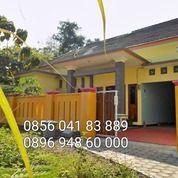 Rumah Istimewa Kauman Nganjuk (26344291) di Kab. Nganjuk