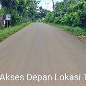 Tanah 16,7 Ha (167,000 Meter) Kp.Margaluyu Ds.Sukarasa Kec.Tanjungsari, Bogor (26354991) di Kab. Bogor