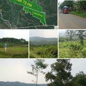 Tanah 25 Ha Jl. Raya Dayeuh Desa Sukasirna Kec.Jonggol Bogor (26358363) di Kab. Bogor