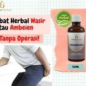 Obat Herbal Wasir Atau Ambeien , Tanpa Operasi! (26364051) di Kota Tangerang