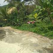 Tanah Cocok Untuk Kebun Buah 5055m2 Karangpandan (26370059) di Kab. Karanganyar