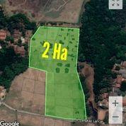 Lahan Perumahan 2 Hektar Serang Baru Bekasi (26405391) di Kab. Bekasi