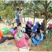 Kavling Murah Kavling Produktif Kebun Dan Ternak Lamaru (26414631) di Kota Balikpapan