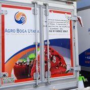 BRANDING MEDAN UNTUK MOBIL BOX DAN MOBIL KANTOR DI MEDAN (26422615) di Kota Medan