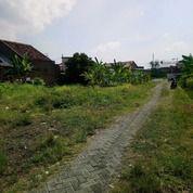 Tanah SHM 400m2 Siap Bangun Di Syuhada Depok Dalam II (26476227) di Kota Semarang