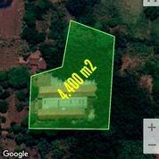 Lahan Industri 4.400 M2 - Setu Bekasi (26488419) di Kab. Bekasi