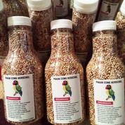 Pakan Khusus Lomba Lovebird Paud Bikin Burung Mendayu Dayu (26490871) di Kota Bekasi