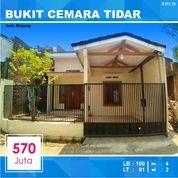 Rumah Murah 2 Lantai Luas 81 Di Bukit Cemara Tidar Kota Malang _ 511.19 (26498443) di Kota Malang