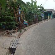 Kavling Tanah Siap Bangun Bisa 60m (26506279) di Kab. Bogor