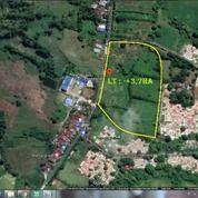 @ Lahan -+3,7 Ha Poros Pattalassang, Borongpa'la'la Gowa @ (26535607) di Kab. Gowa