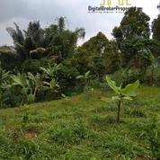 Tanah Kebun Murah Kolonel Masturi Cimahi Cisarua Bandung (26563851) di Kota Bandung