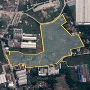 Tanah 10 Ha Jl. Raya Cikande Rangkasbitung Tangerang Banten (26565259) di Kab. Tangerang