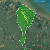 Lahan Investasi 975 Ha - Ds. Mekarpahoci Karawang (26637799) di Kab. Karawang