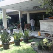 Tanah Bonus Rumah Tua 25 Juta /Meter Di Pejaten Barat Raya, Jakarta Selatan (26696259) di Kota Jakarta Selatan