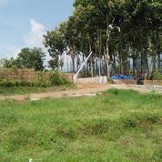 Tanah Kavling Siap Bangun Cocok Untuk Hunian Maupun Investasi Kota Wisata Batu (26706703) di Kota Batu