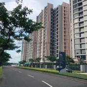 Navapark Marigold 1BR Semi Furnish Promo (26712319) di Kota Tangerang Selatan