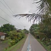 Tanah Kaplingan Murah, Lokasi: Jln Pasar 7, Seko Beno, Kecamatan Stabat, Kabupaten Langkat. (26723587) di Kab. Langkat