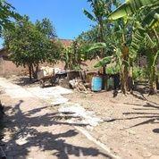 Tanah Murah Banget Selatan Jalan Godean Km 4 Atau Barat Kampus STPN,Lebar Depan 20 M,Snga Strategis (26740471) di Kota Yogyakarta