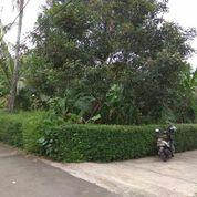 Tanah Kavling Hoek Cocok Untuk Rumah Tinggal Di Cirendeu (26753195) di Kota Tangerang Selatan