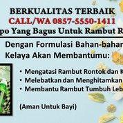 TAK ADA TANDINGANNYA, CALL/WA 0857-5550-1411, Shampo Yang Bagus Untuk Rambut Kering (26769003) di Kota Surabaya